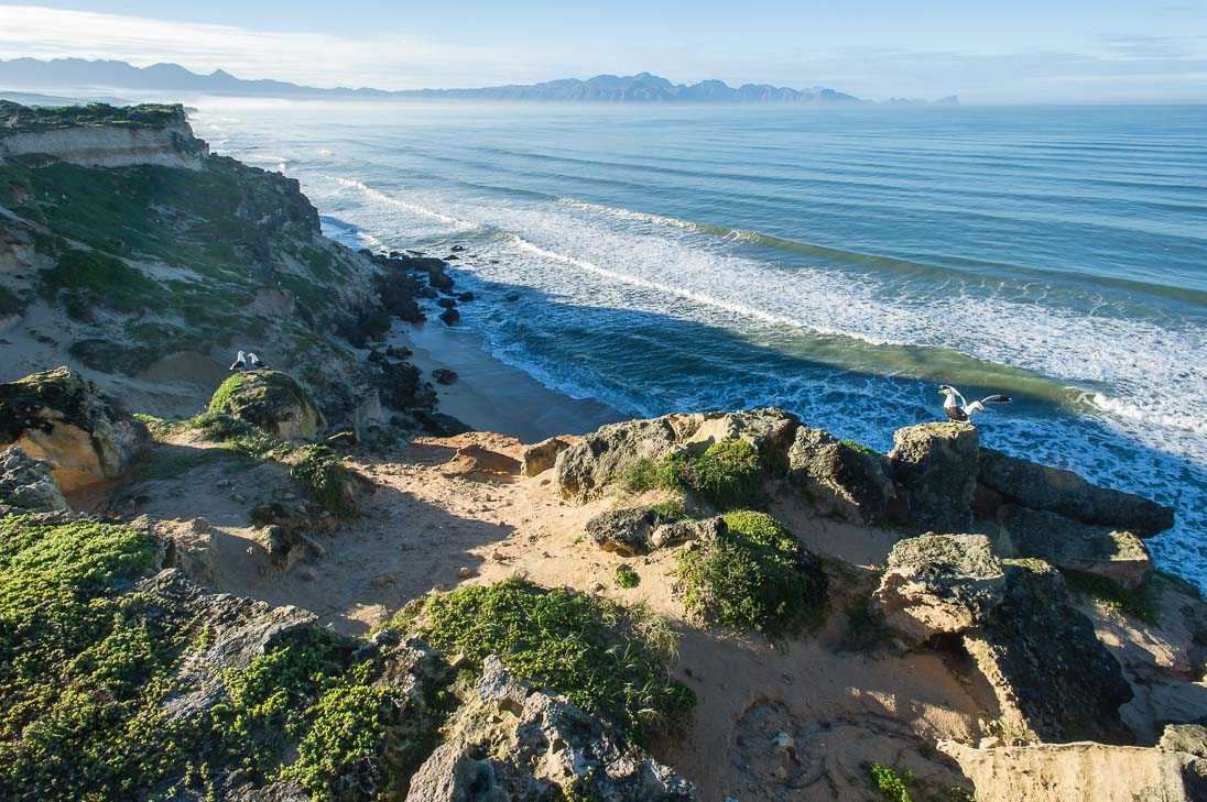 The coastal cliffs of Helderberg MPA (Peter Chadwick)