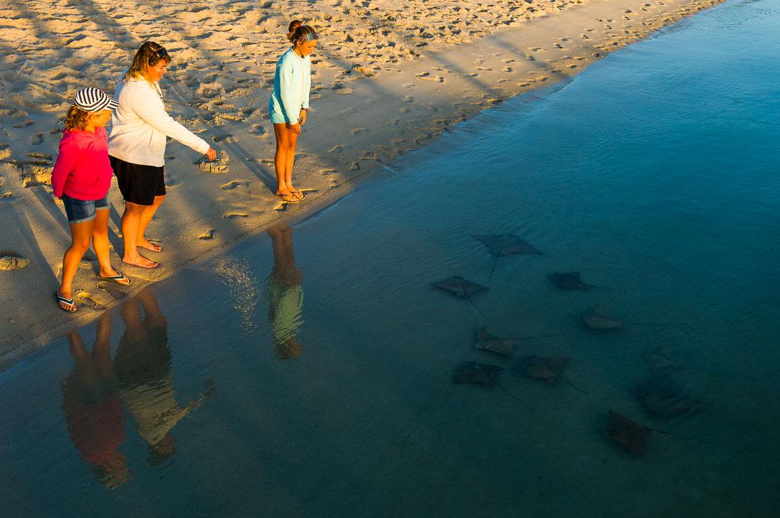 012_West Coast National Park_©PeterChadwick_AfricanConservationPhotographer.jpg