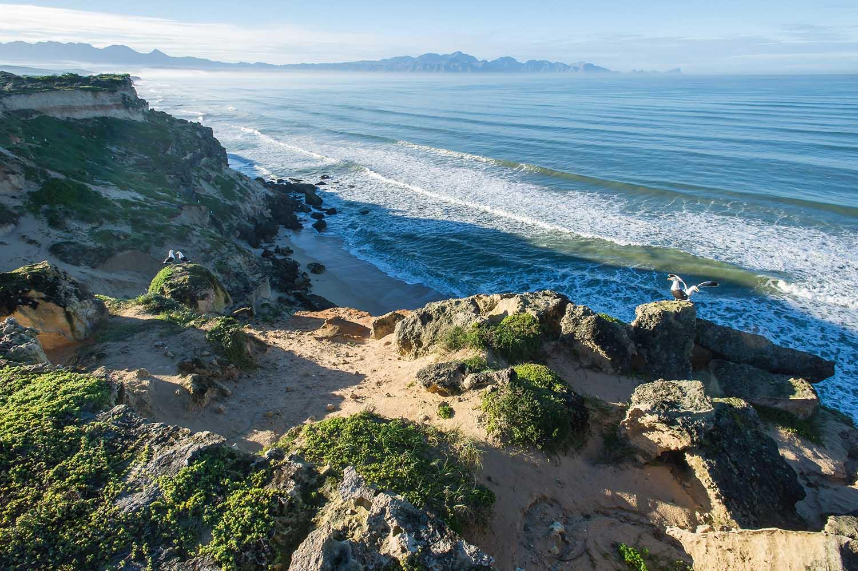 helderberg-marine-protected-areas-south-africa©PeterChadwick_AfricanConservationPhotographer_web.jpg