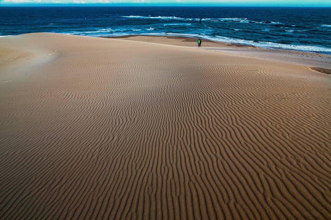 Impressive coastal dunes (Luc Hosten)