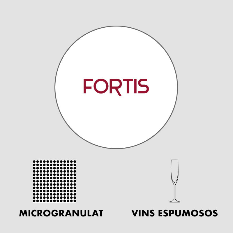 x_fortis copy.jpg