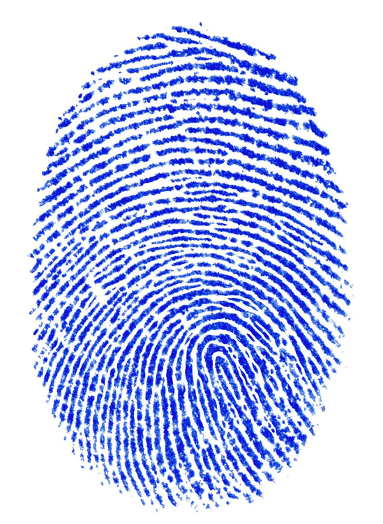 Like a fingerprint, your genetic coding is unique and a professional intrepretation is the key to optimizing your genetic expression.