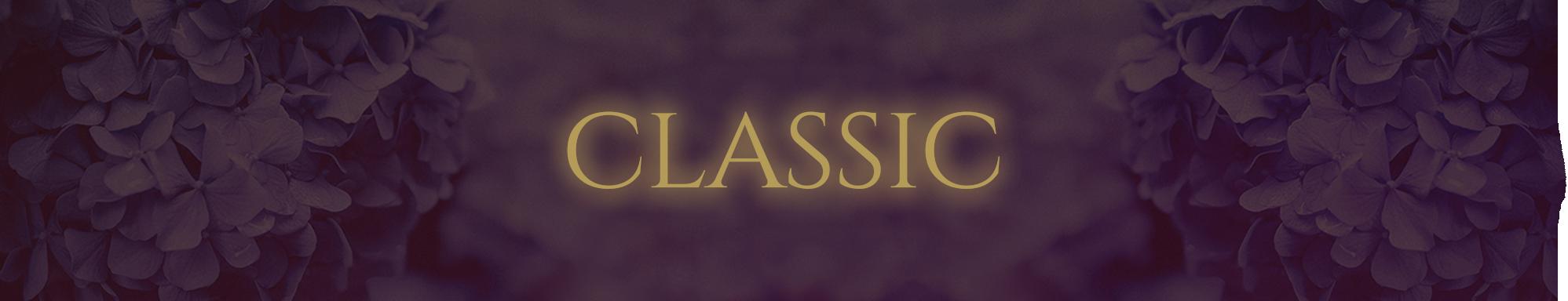 FRIDA. Classic Banner.png