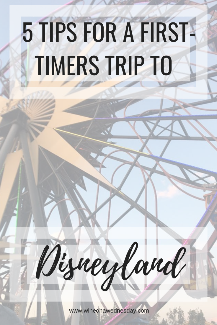 going to disneyland for the first time? check out these tips!