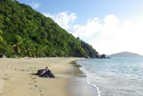 mountain trunk beach 2.jpg