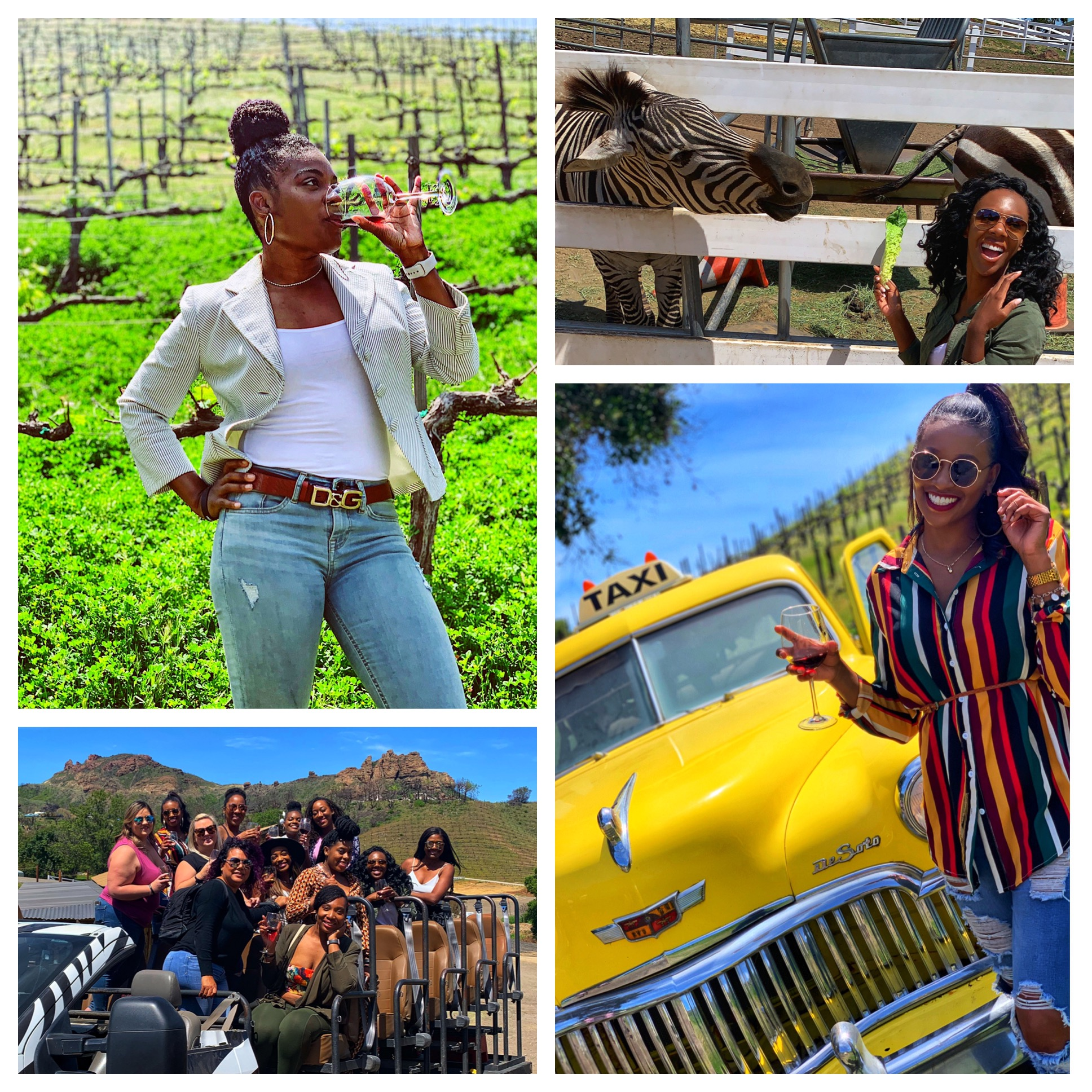 Malibu Wine Safari & Brunch - Includes:✓Private nurses tour at Malibu Wine Safaris✓Brunch over looking the ocean at Moonshadows restaurant✓Luxury round trip transportation from Santa Monica to Malibu✓End the day on the beach at the Santa Monica Pier✓Nurse swag bag filled with goodies
