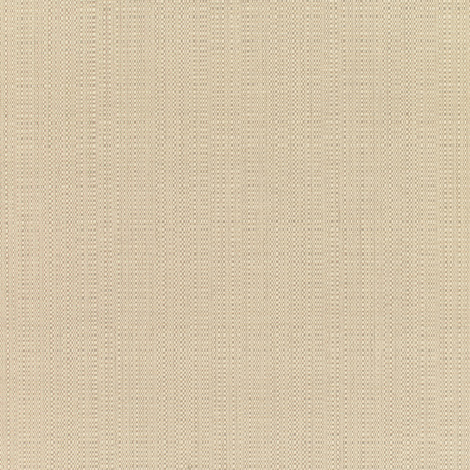 Champagne Linen
