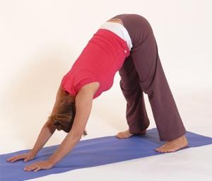 Dru-yoga-pose-dog-Monica.jpg
