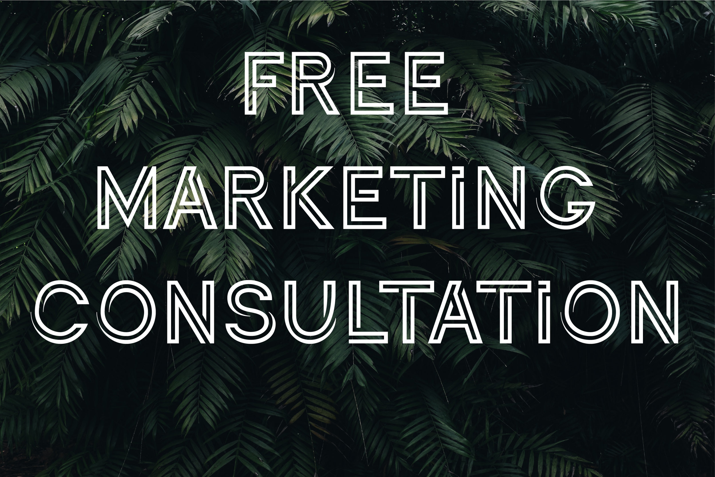 Free Marketing Consultation.jpg