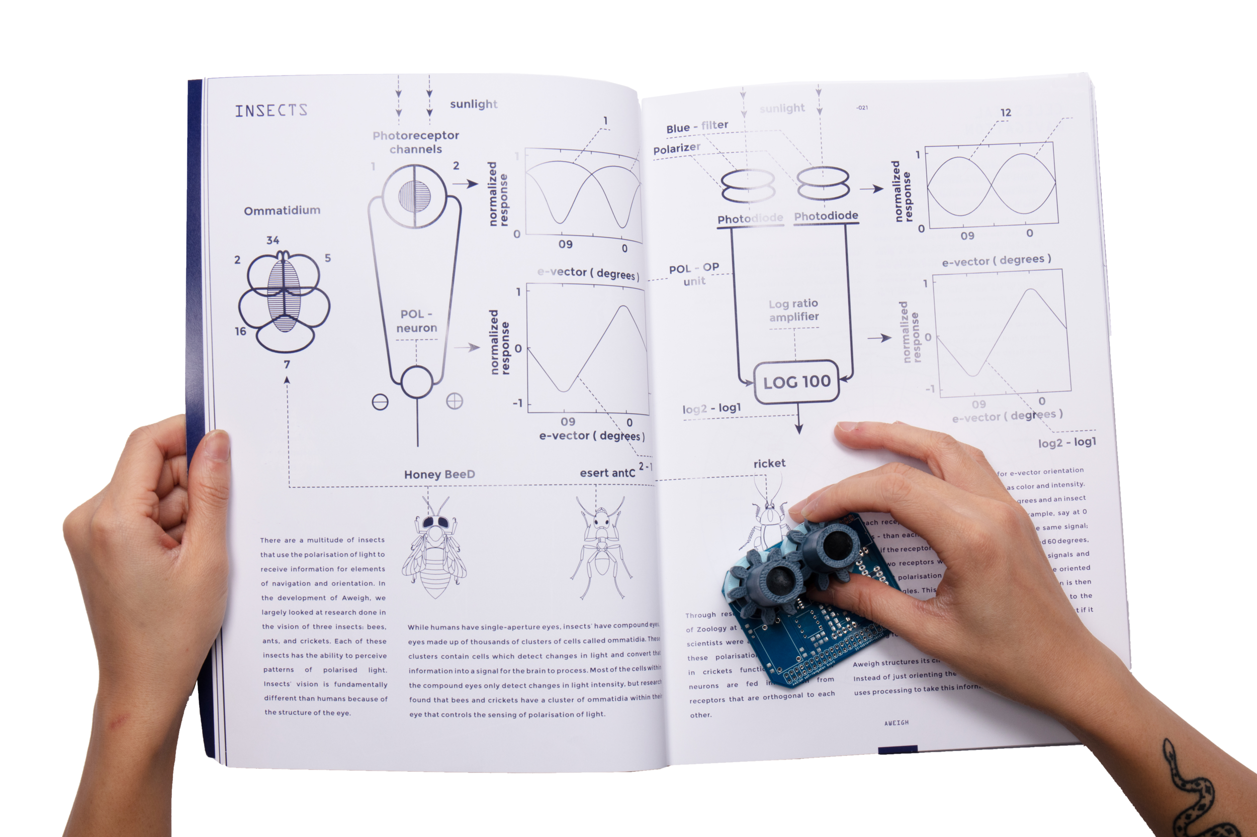 book_pcb_insect_nav_page.png