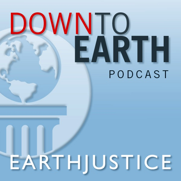 Down to Earth podcast image 1200x630bb.jpg