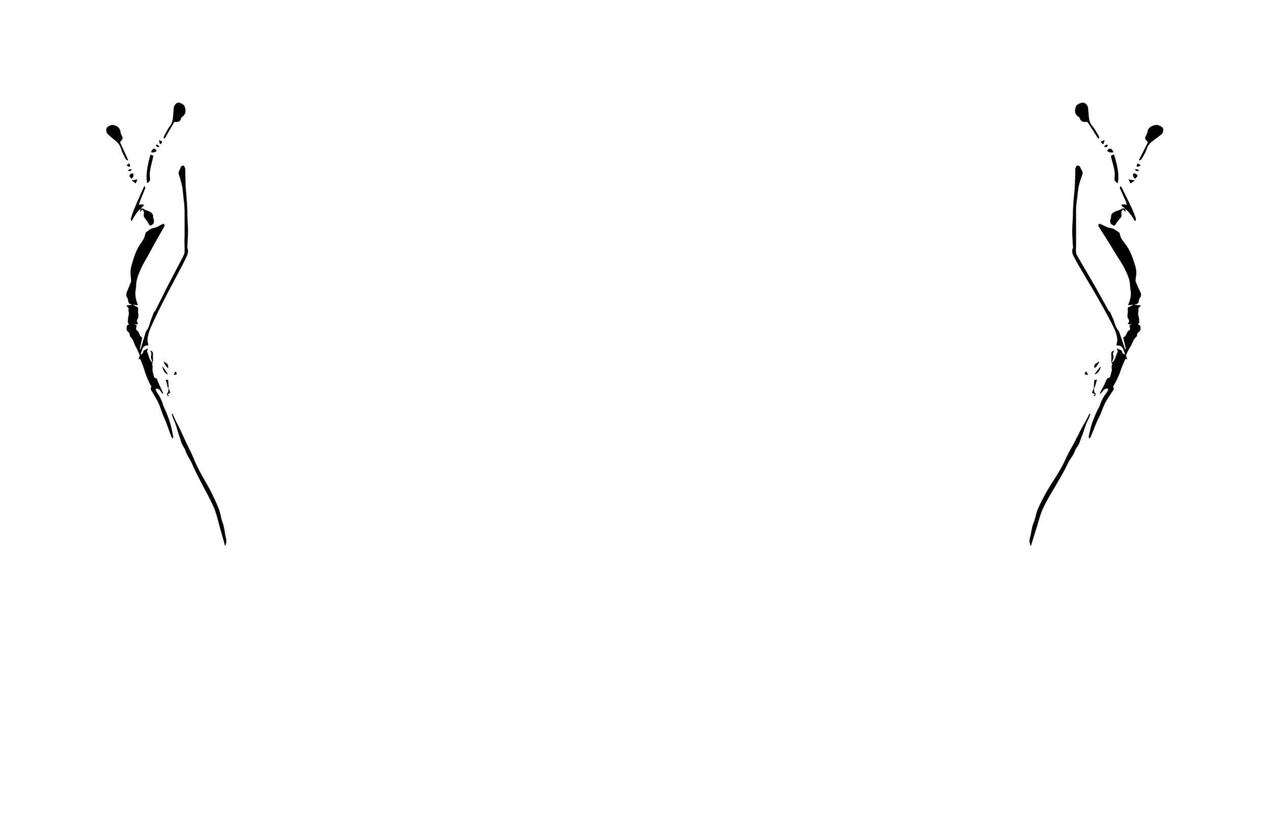 NFF_18_Official_Selection_Reverse Best Actress Nomination.png