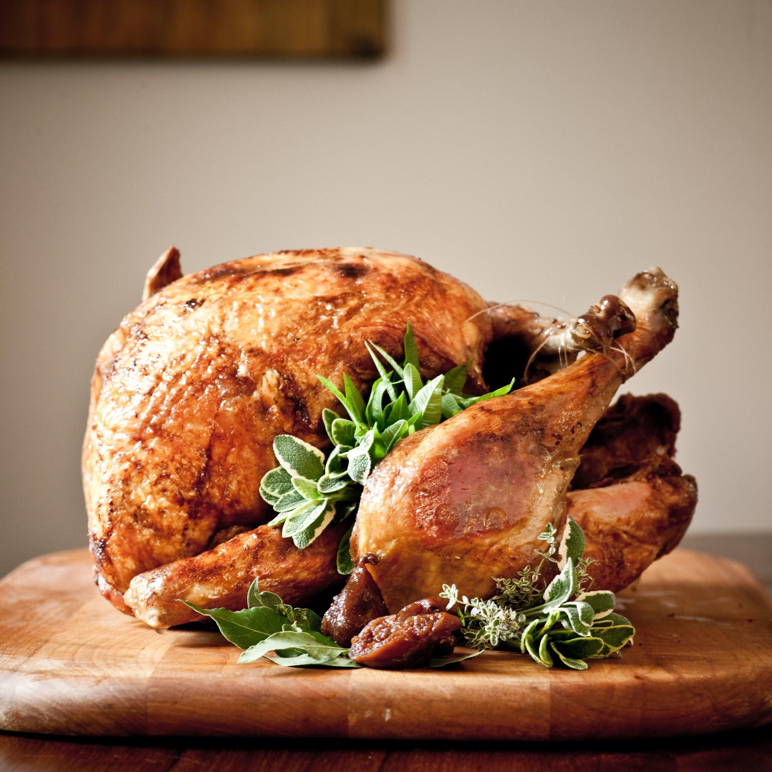 deep fried turkey-sara_shoot5_0316 copy.jpg