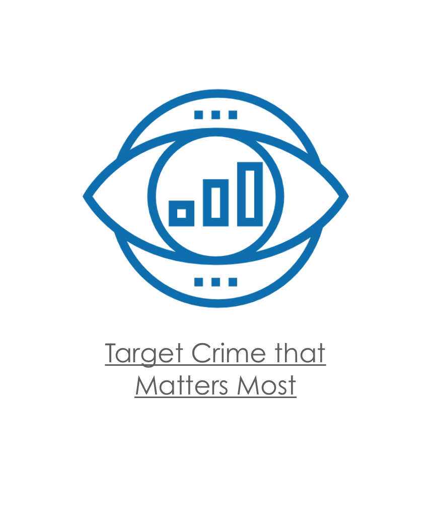 Target Crime that Matters Most