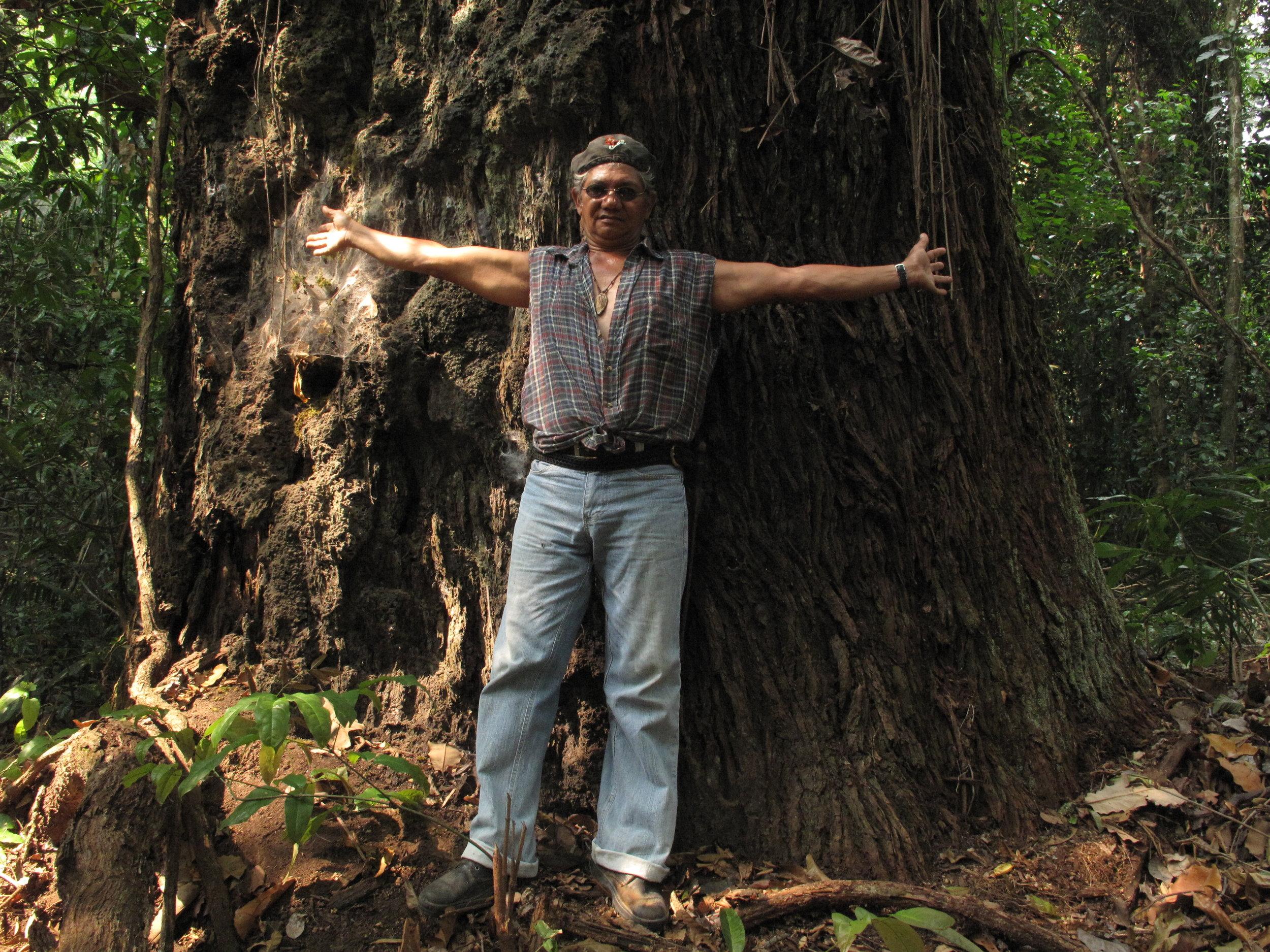 The Guardian - 448 'Dead Friends of the Earth' in Brazil since 2002