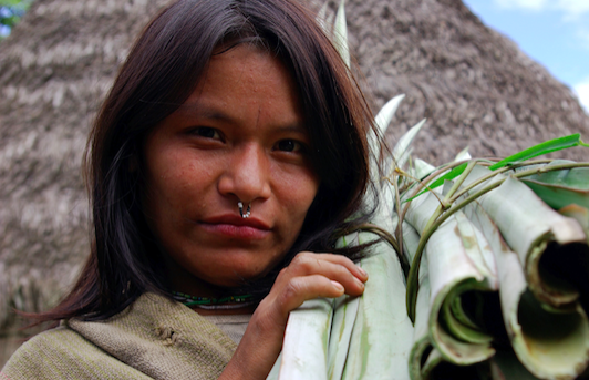 NewInt - Indigenous organizations to sue Peru over Amazon gas project