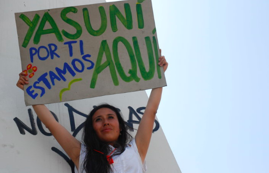 AlterNet - Why Peru's rainforest is about to be decimated while celebrities rally for Ecuador's