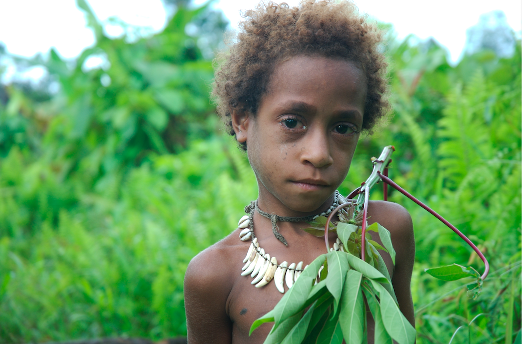A Korowai boy in central West Papua. West Papua has been occupied by Indonesia since the 1960s - with horrific consequences. Credit: David Hill