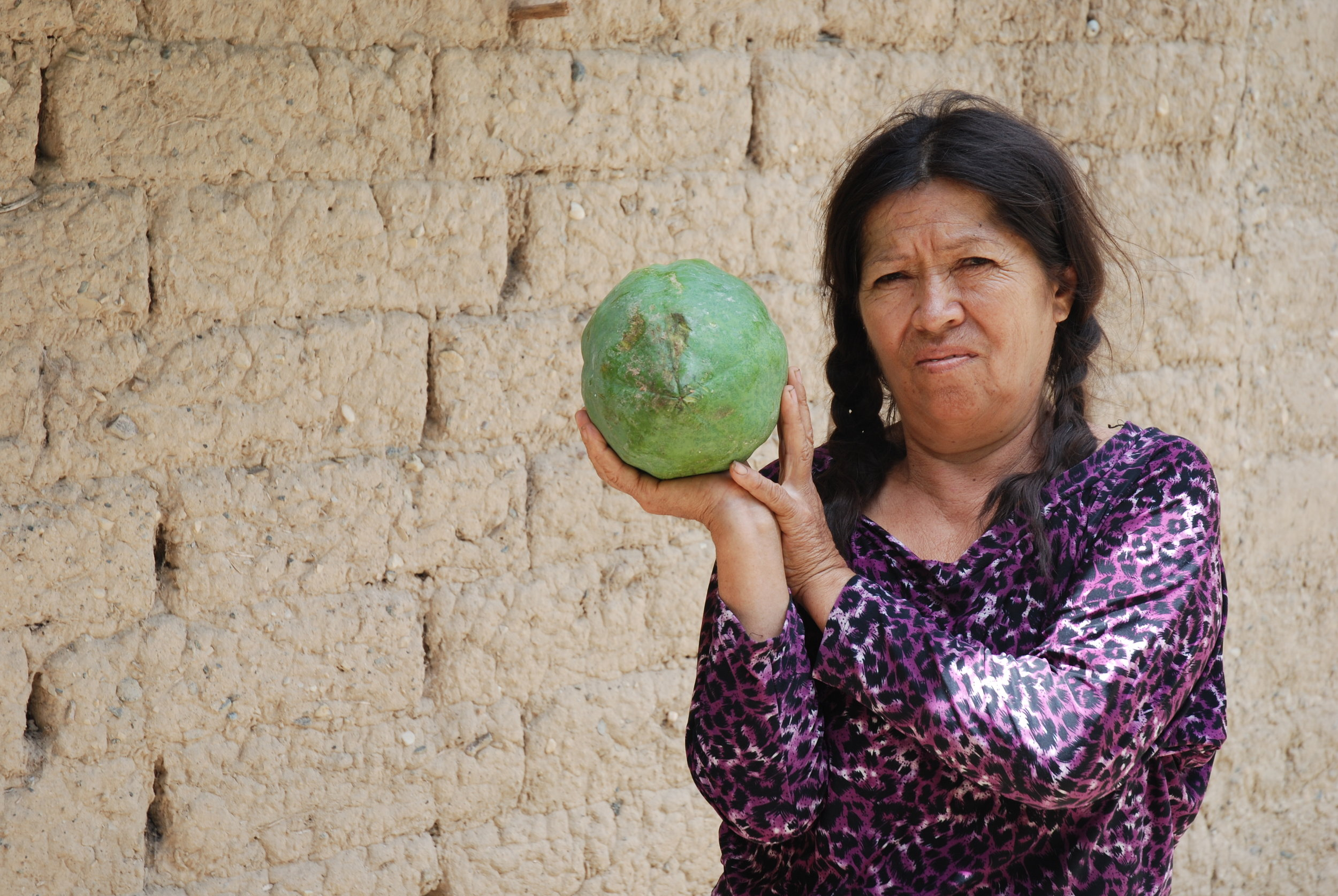 Angélica María Araujo, from Saumate village along the River Marañon, Peru. Her village stands to be flooded by the proposed Chadín 2 dam. Credit: David Hill