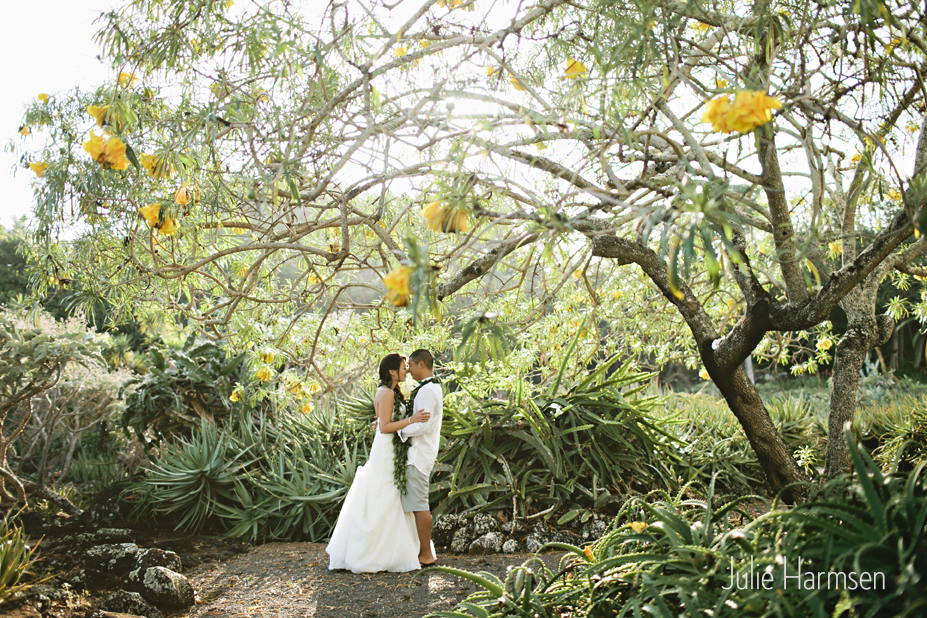 Pillare and Richard - Cactus Garden - Julie Harmsen (1).jpg