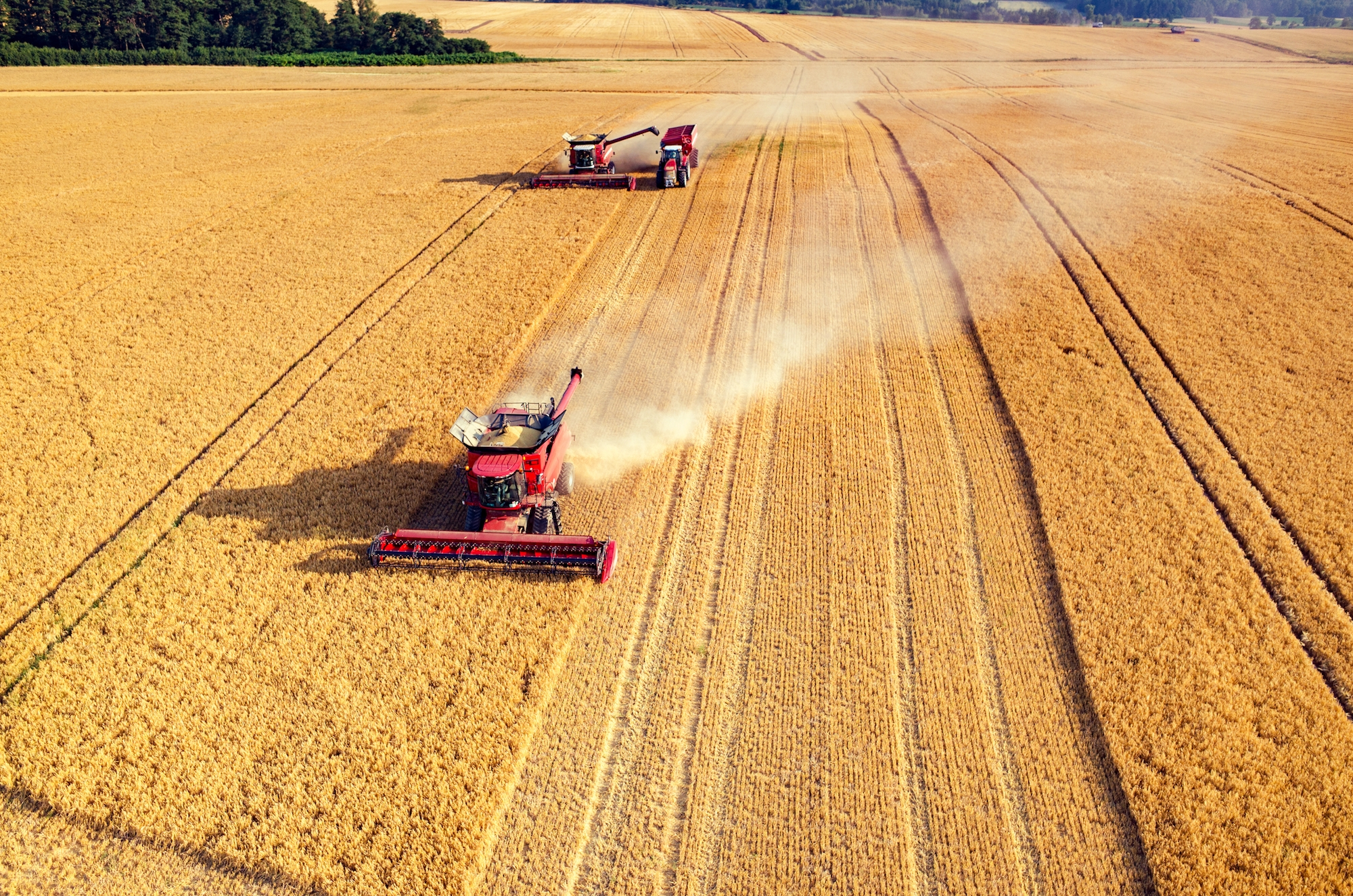 Harvester in Field