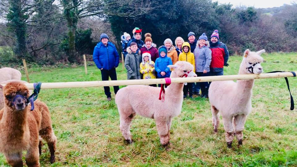 Alpaca Trek & Experience - Click below to view the calendar of available dates and to book.