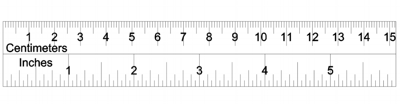 6-inch-ruler-printable_528158.png