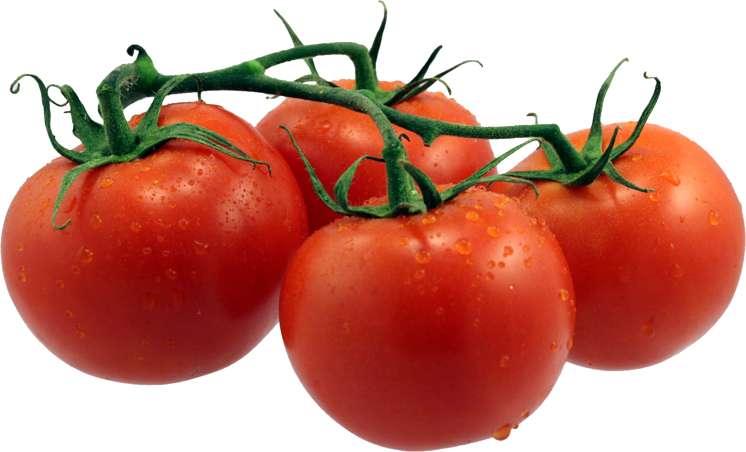 purepng.com-red-tomatoestomatosalad-fruitred-fruittomatoes-1701527318288ib3rx.png