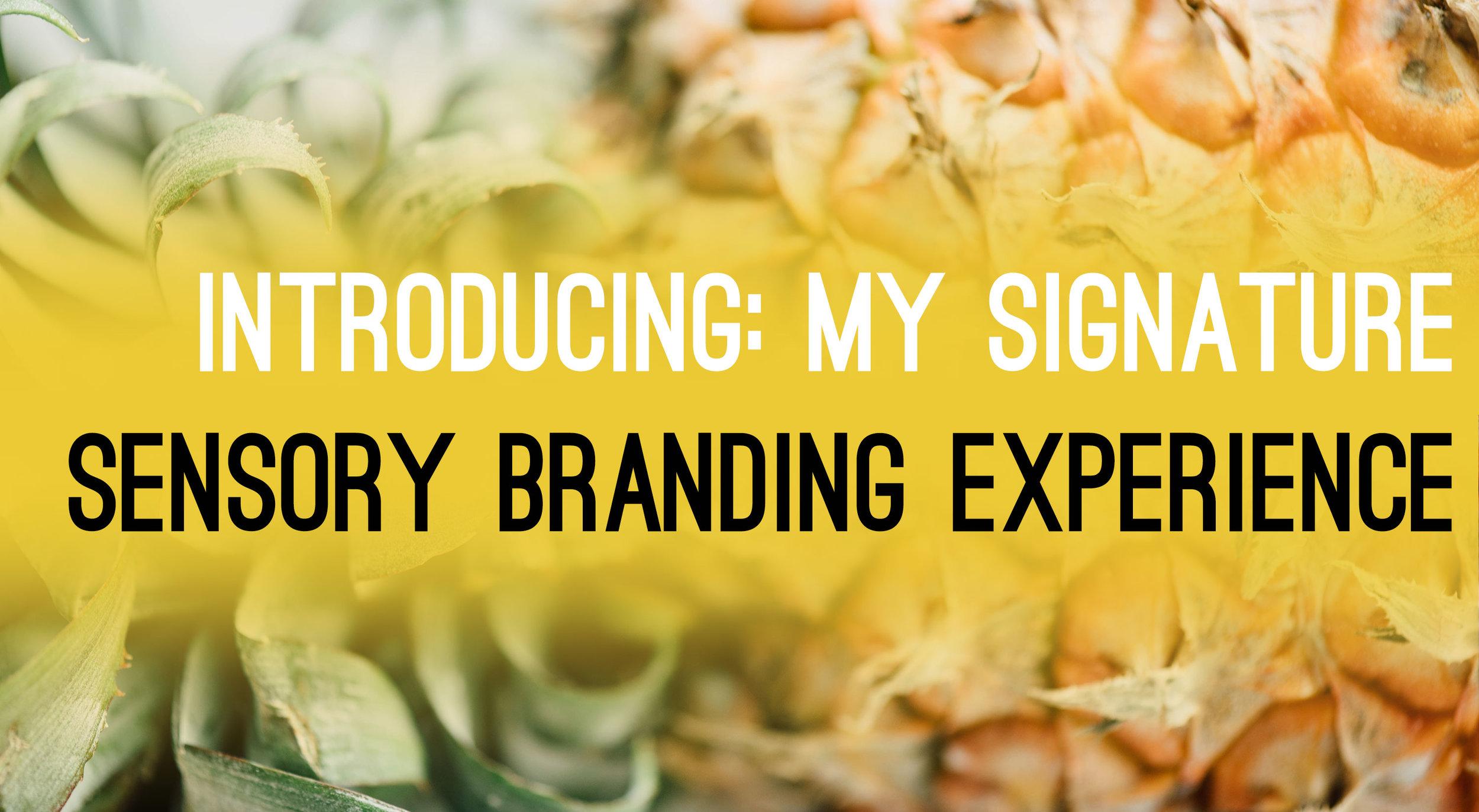 jc-signature-sensory-branding-experience-graphic.jpg