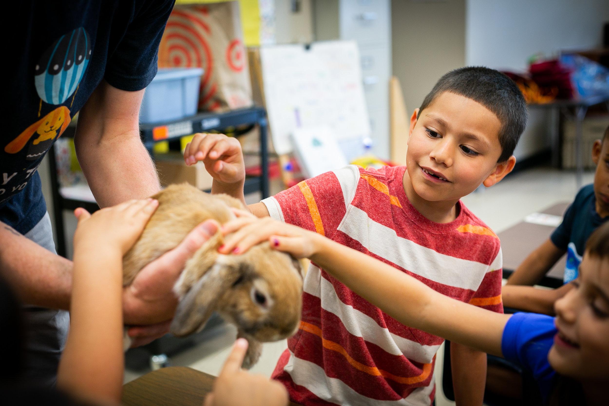 live-animal-classroom-programs.jpg