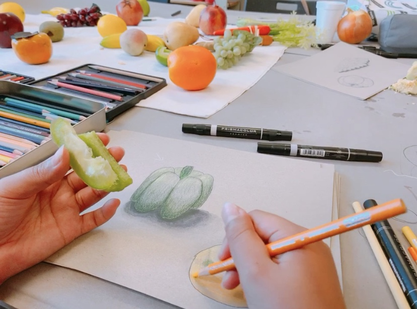VISCOM DRAWING - This class is designed to develop your foundations and observation skills. You will learn to break objects down to their most basic geometric forms while also learning to translate a type of object.