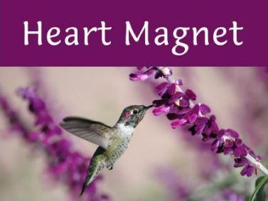 Heart Magnet logo.JPG