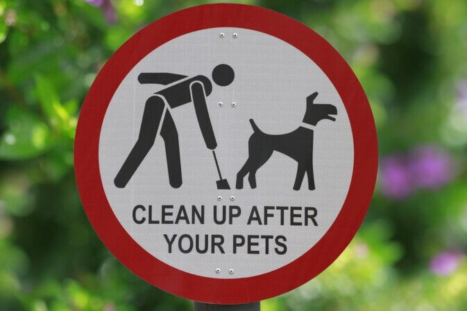Dog-Waste-Removal-3.jpg