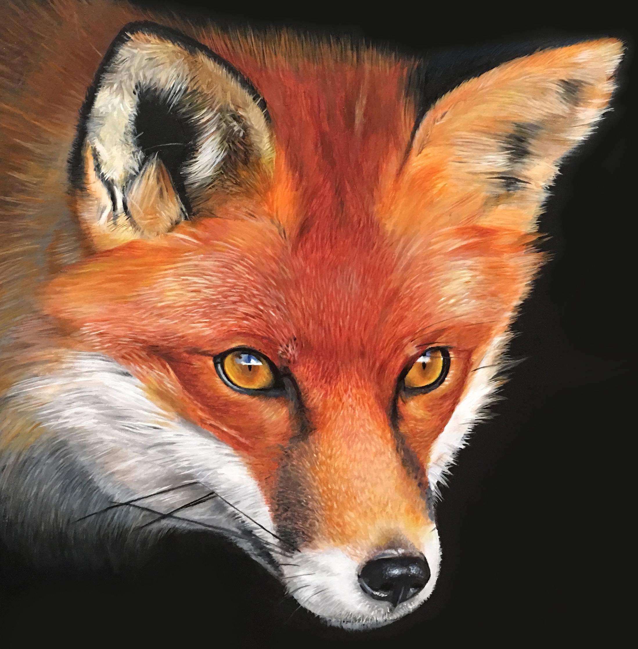 Fox study (detail),  2018, oil on wood panel, 40x60cm.