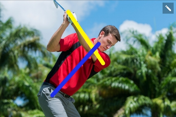 Online Analysis - We'll utilize our digital instruction platform to break down your golf swing pinpointing areas to improve and provide corrective drills.