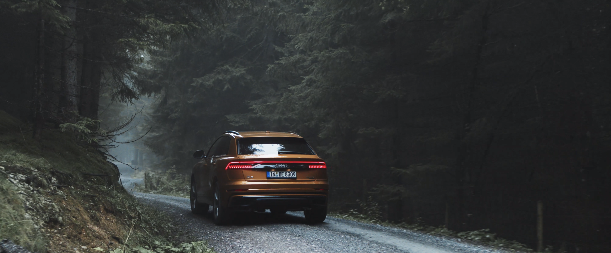 Audi/ Mountain Experience