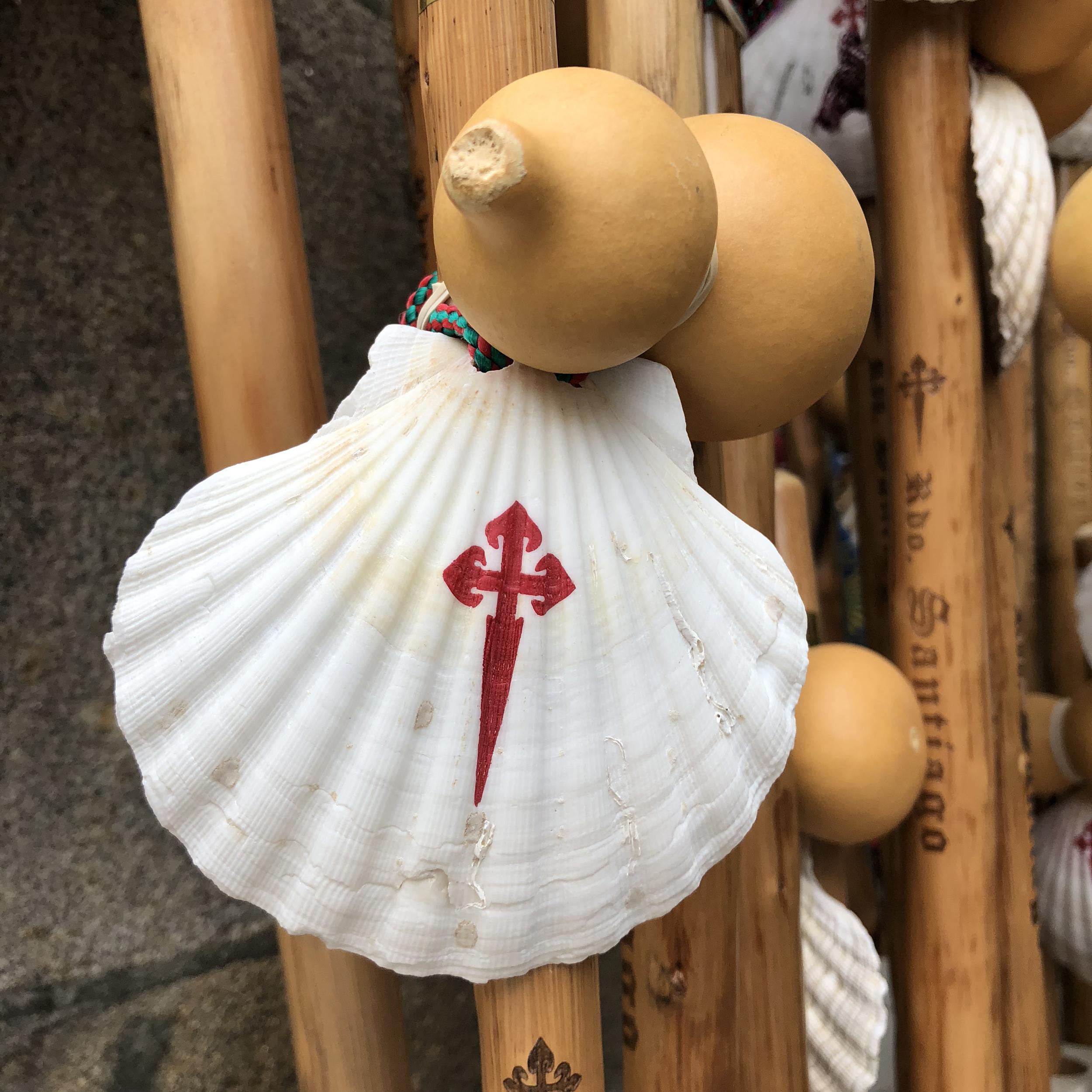 Pilgrim shell.