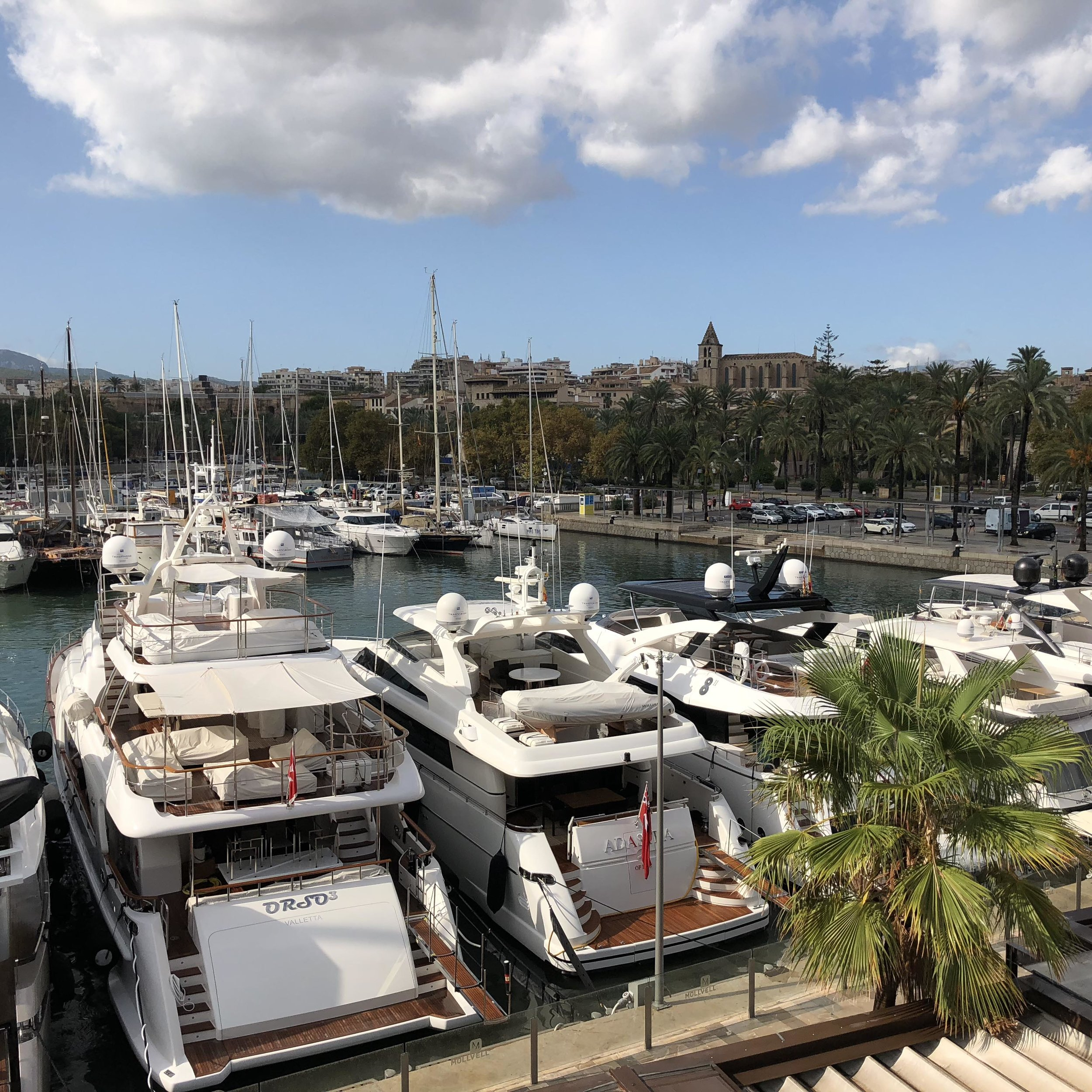 The port of Palma.