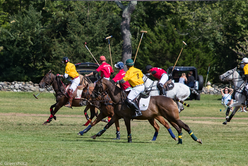 Golds Dragoons Polo 2017-7482-L.jpg
