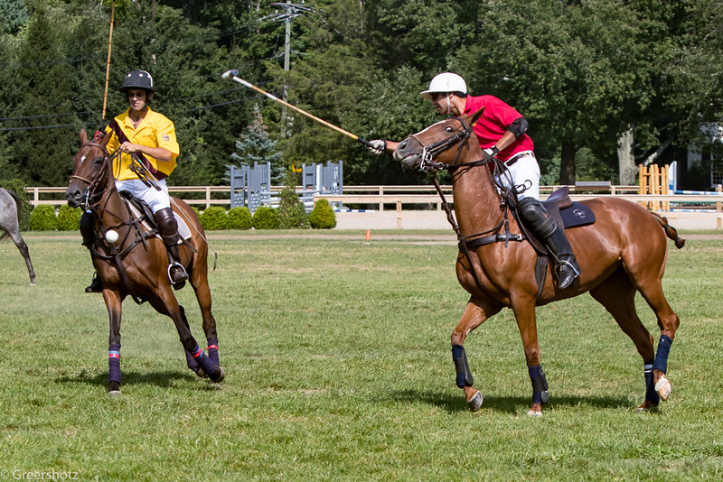 Golds Dragoons Polo 2017-7464-L.jpg