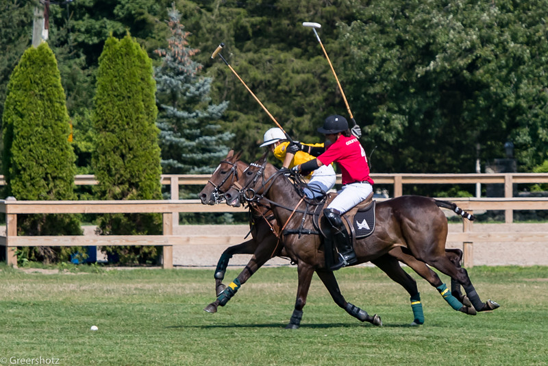 Golds Dragoons Polo 2017-7795-L.jpg