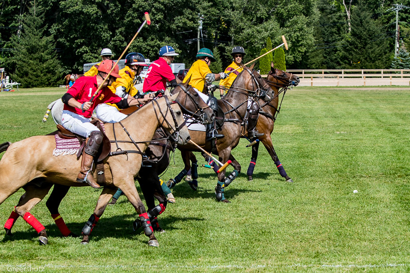 Golds Dragoons Polo 2017-7550-L.jpg