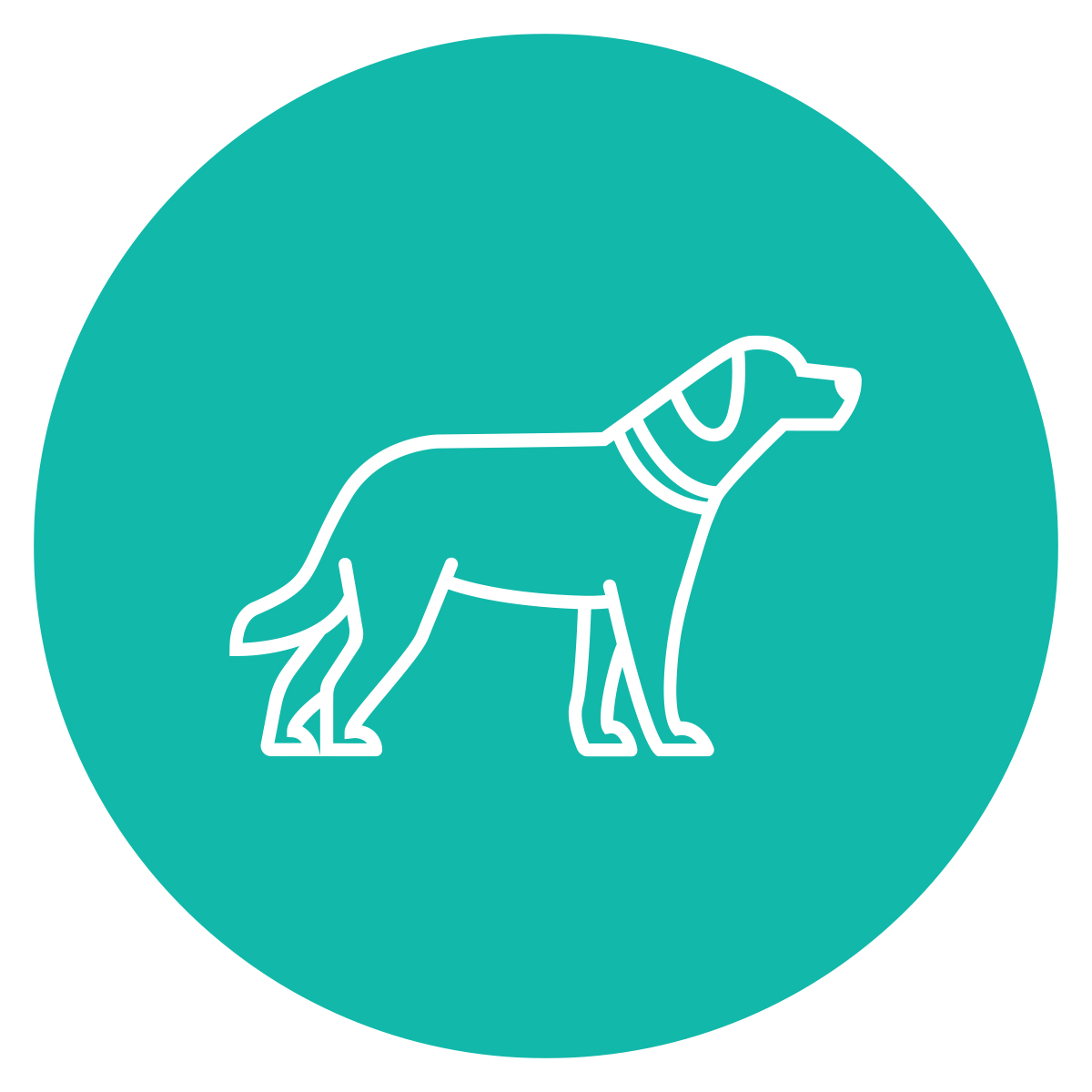 Advanced_Pet_Care_Dog_icon.jpg
