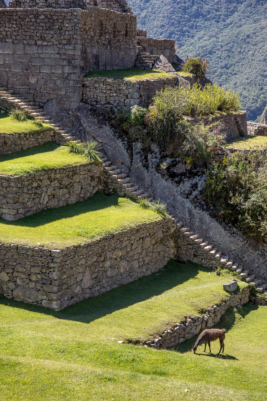 Peru2018_1093.jpg