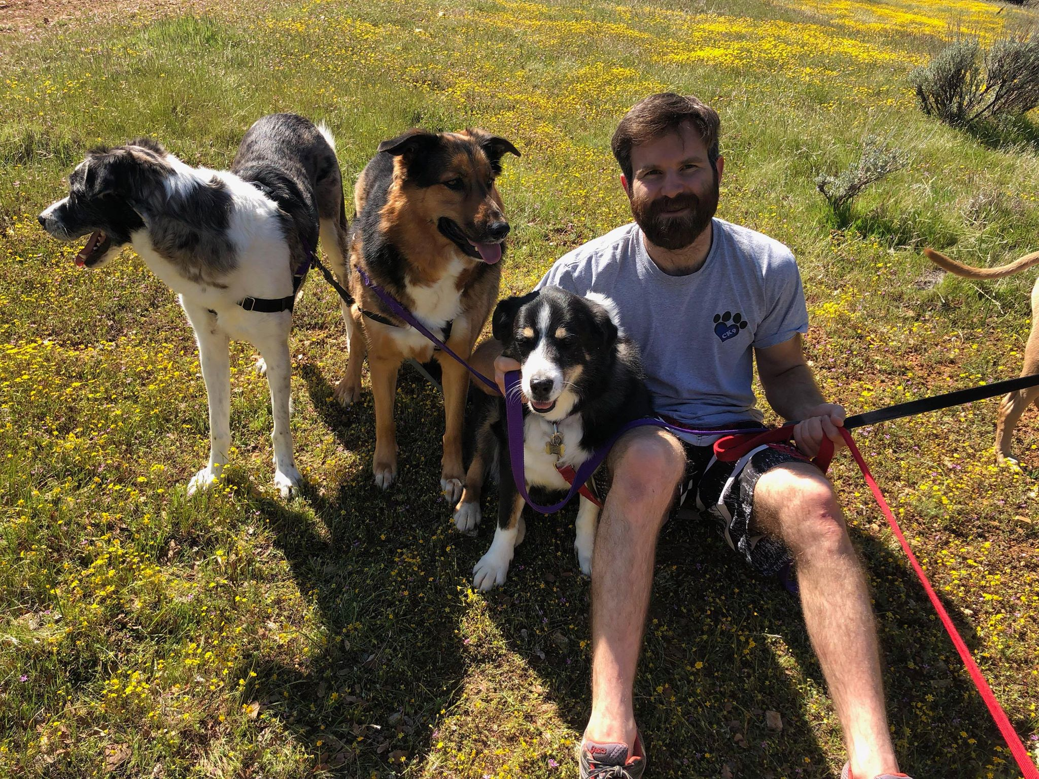 kyler emery - Kyler will be running the Half Marathon. To donate to Kyler's campaign please visit:fundly.com/kyler-emery-sos-dog-rescue-marathon-2020-runningforrescues