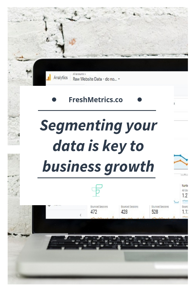 Blog - Segmenting your Data is the key to growing your business.jpg