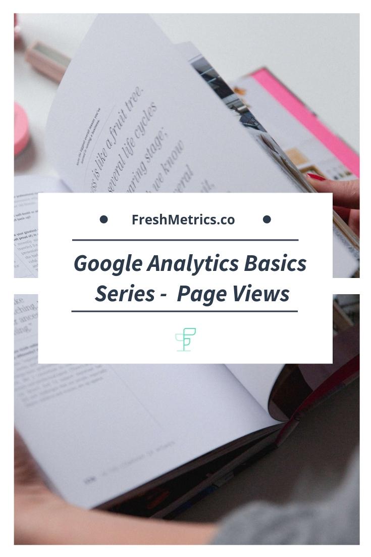 Blog - Google Analytics Basics - Page Views.jpg