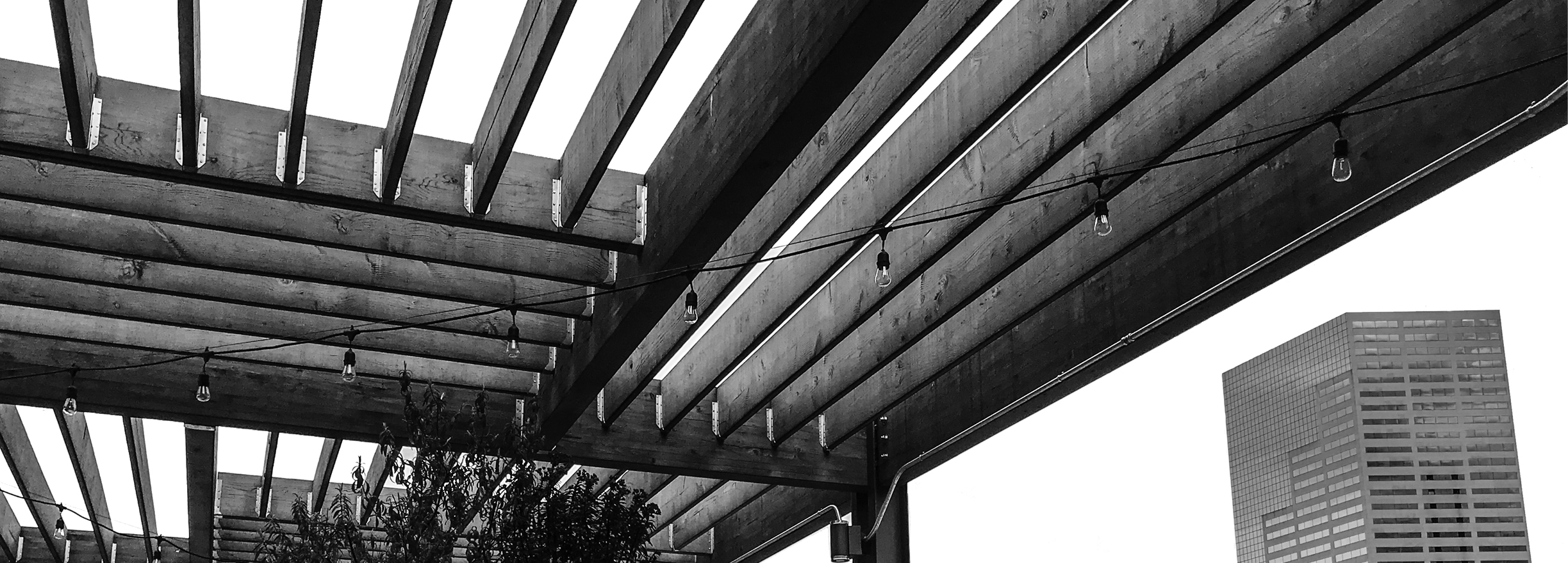 ConcertPageBanner_Rooftops.jpg