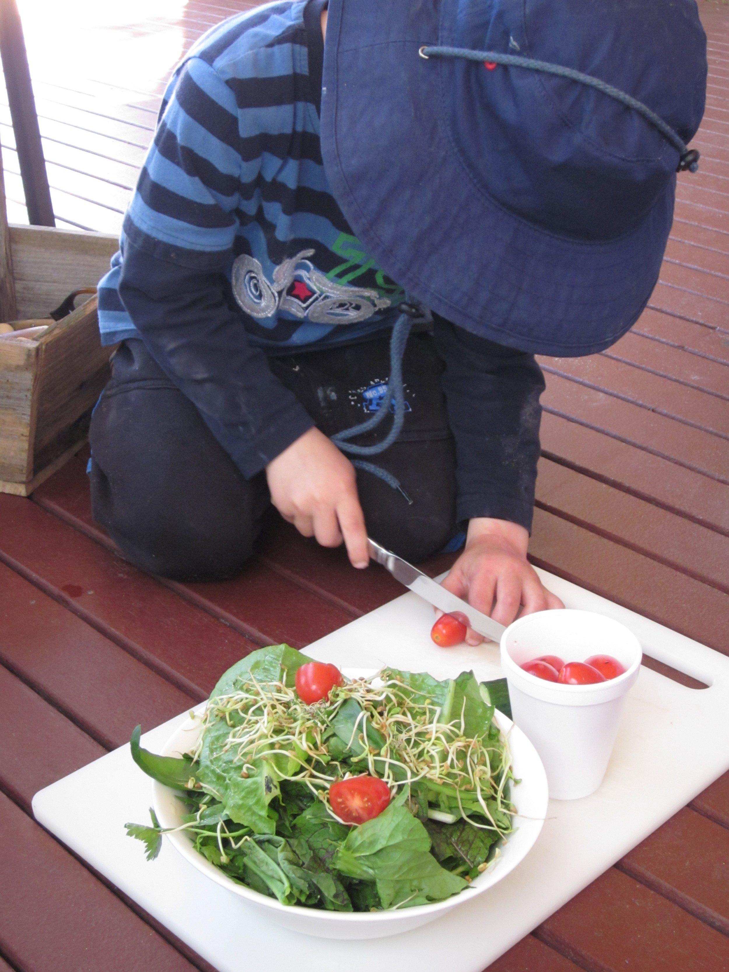 Chopping tomatoes.jpg