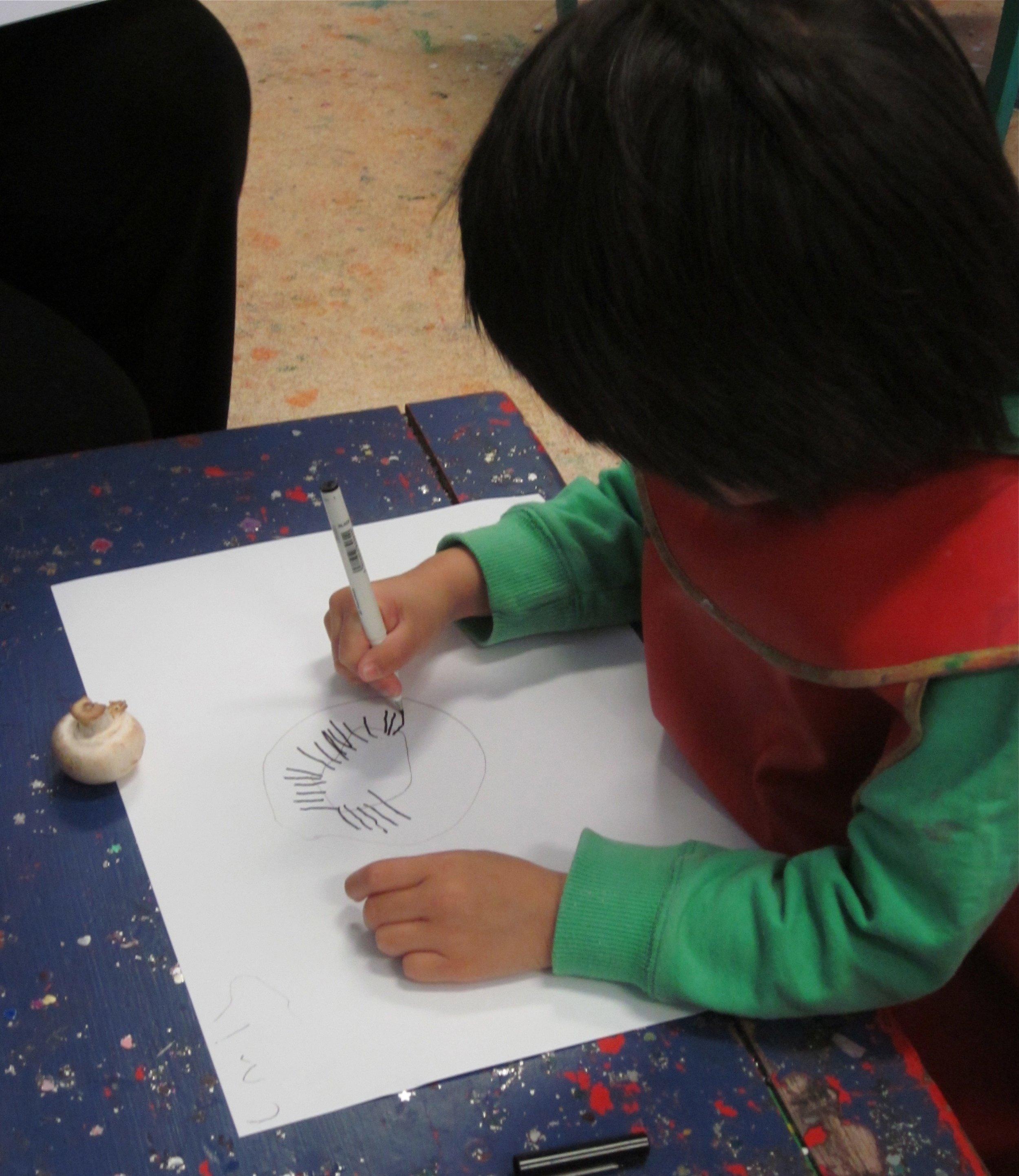 Drawing mushroom.jpg